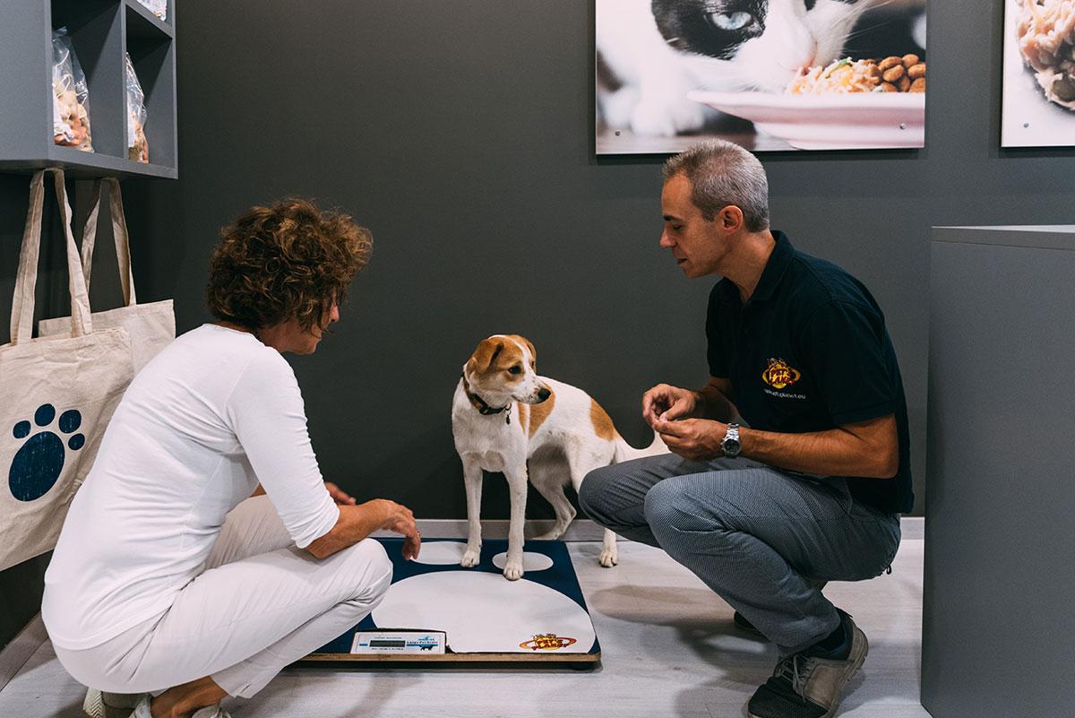 Negozio in franchising di alimenti per animali Pet's Planet