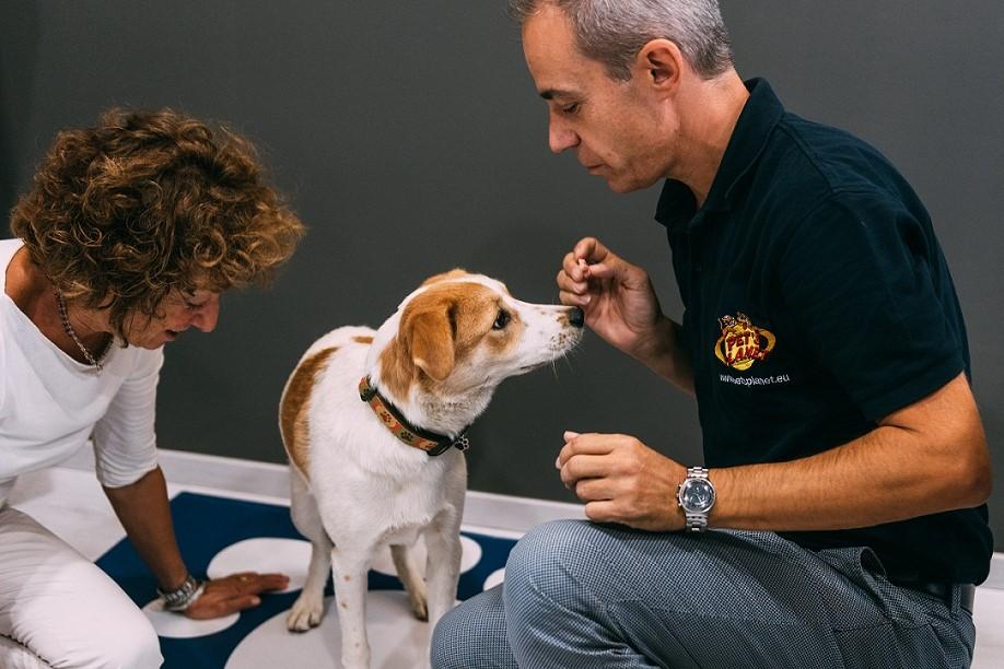 La figura del Consulente Nutrizionale: 5 domande a Vilma Tosco, General Manager Pet's Planet
